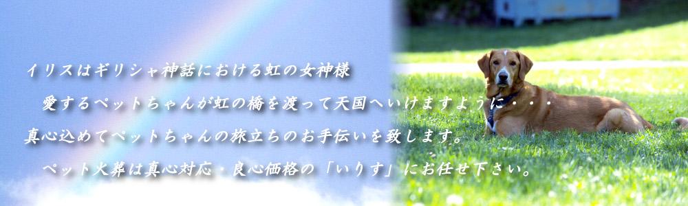ペット火葬、ペット葬儀を大阪、神戸、奈良でお探しなら真心対応、良心価格のいりすへ。